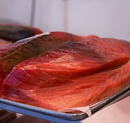 Fresh sashimi grade tuna, ahi, bigeye, yellowfin, tombo, albacore delivered overnight