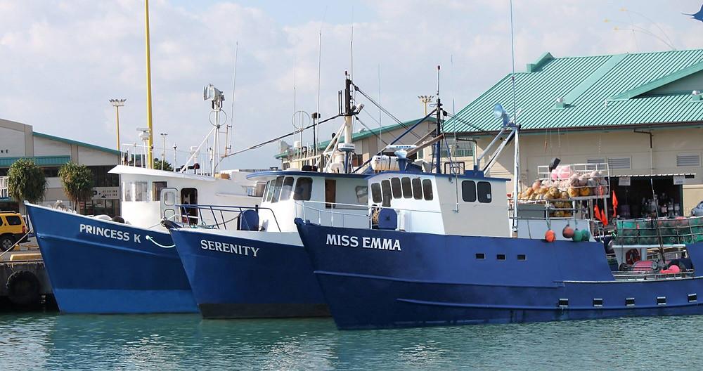 hawaiian fresh seafood fleet at pier 38 honolulu
