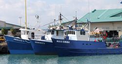 Hawaiian Fresh Seafood Fishing Boats