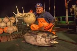 Hawaiian Line Caught Tuna Wholesale