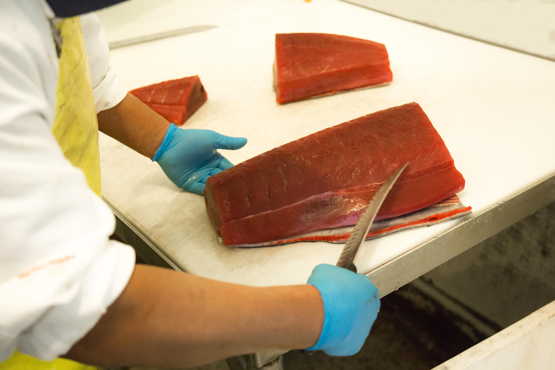 Sashimi grade Hawaiian Tuna Loins