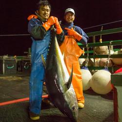 Yellowfin Ahi Tuna Hawaii