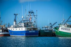 Hawaiian Fresh Seafood Fishing Fleet