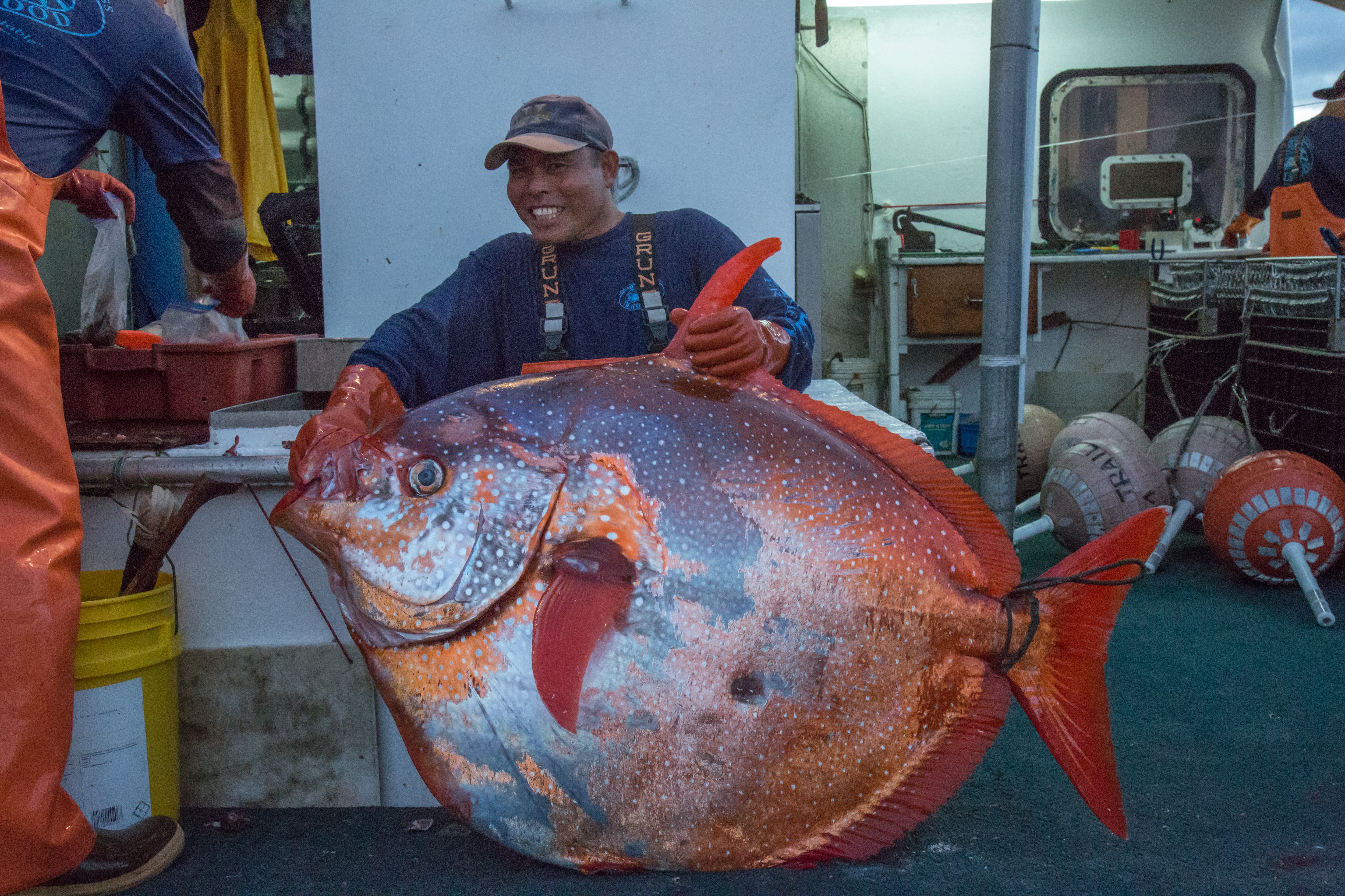 Opah aka Moonfish
