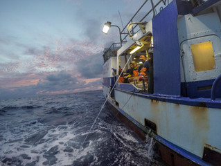 Life On A Hawaii Longline Fishing Vessel