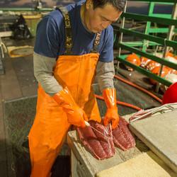 Hawaiian Tuna Loins Small