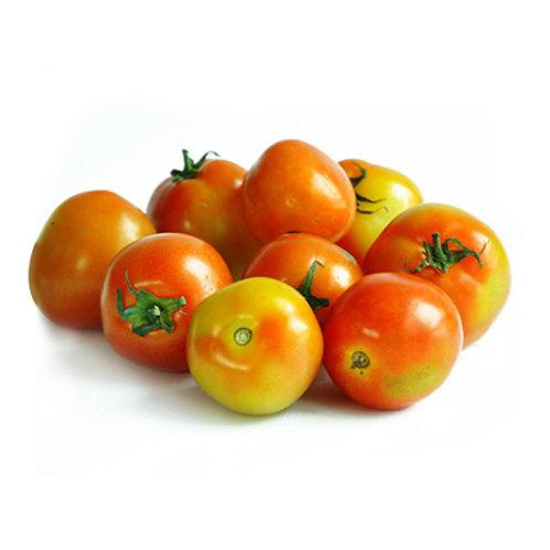Dizon Tomato Native kg