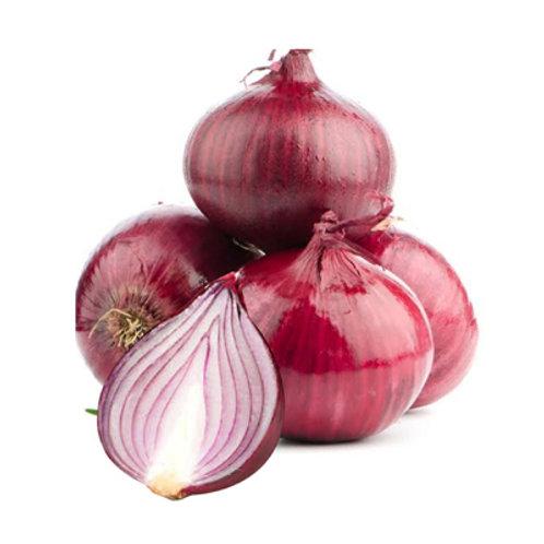 Dizon Onion Red Native kg
