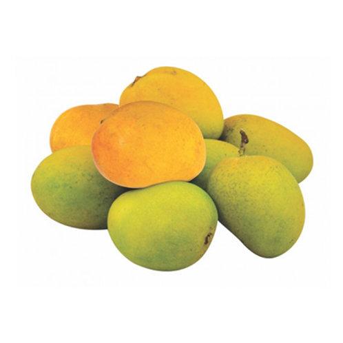 DIZON Mango Indian /kg