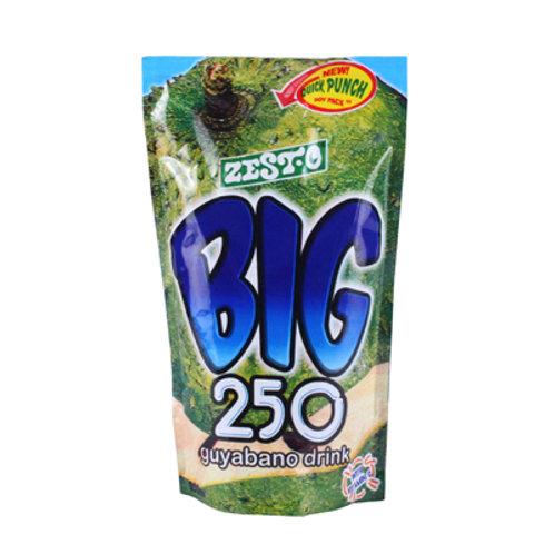Big 250 Fruit Juice Guyabano 250ml