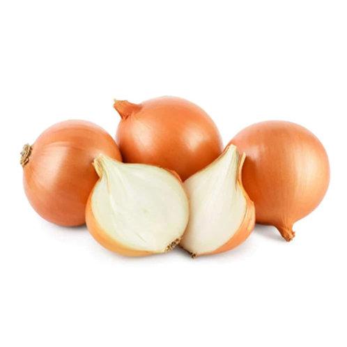Dizon Onion White kg