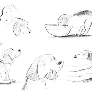 Dog sketches.jpg