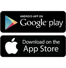 apple_google.png