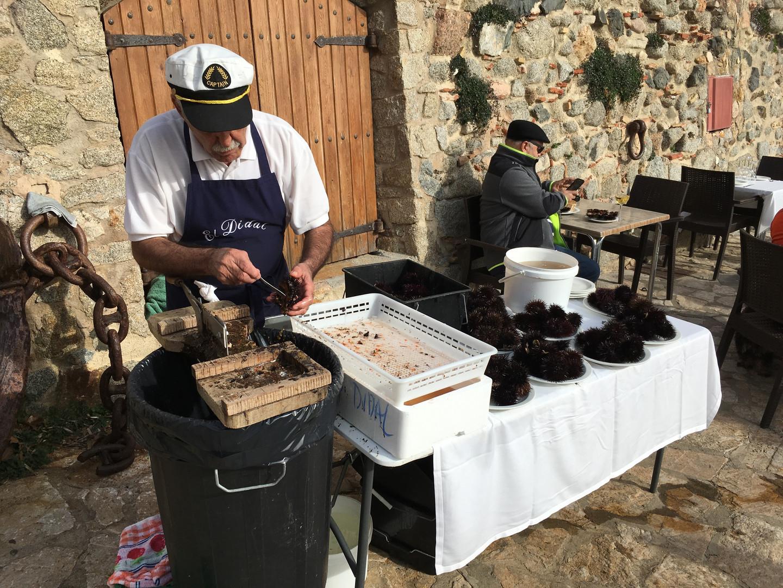 Calella de Palafrugell (zee-egels)