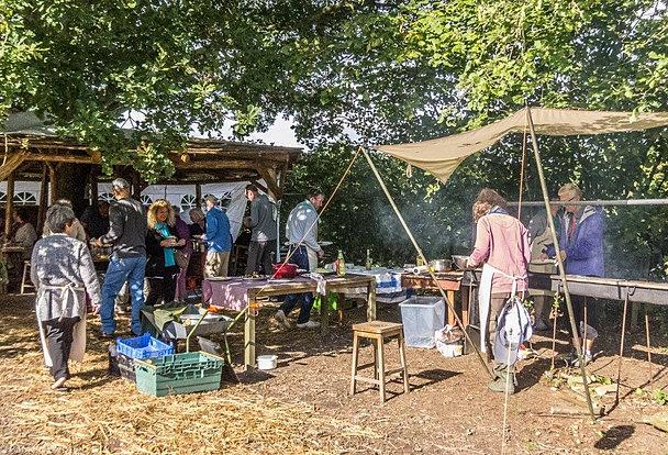 welsummer camping   Shelter