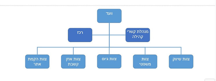 מבנה העמותה.jpg