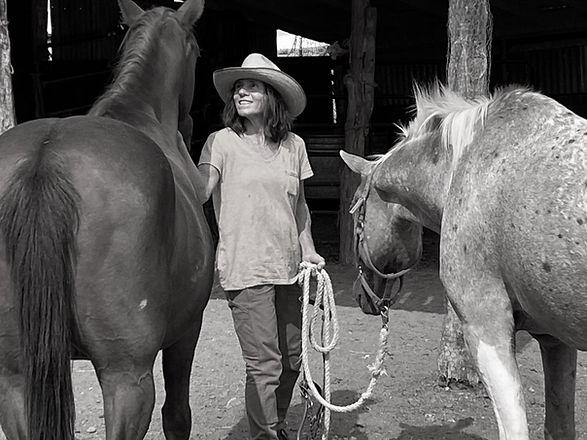 Siri and horses