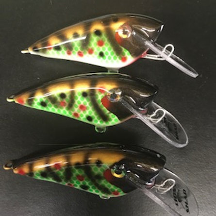 4.5 Boss Shad in Maddies $9