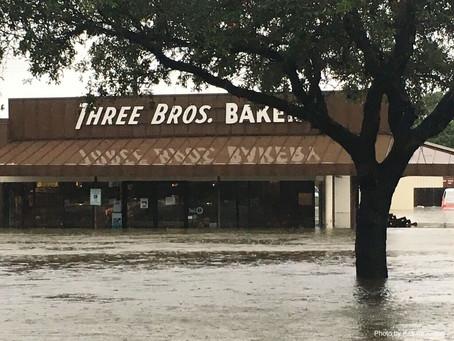 Six expert hurricane season preparedness tips for your business