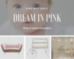 Dream in pink (1).png