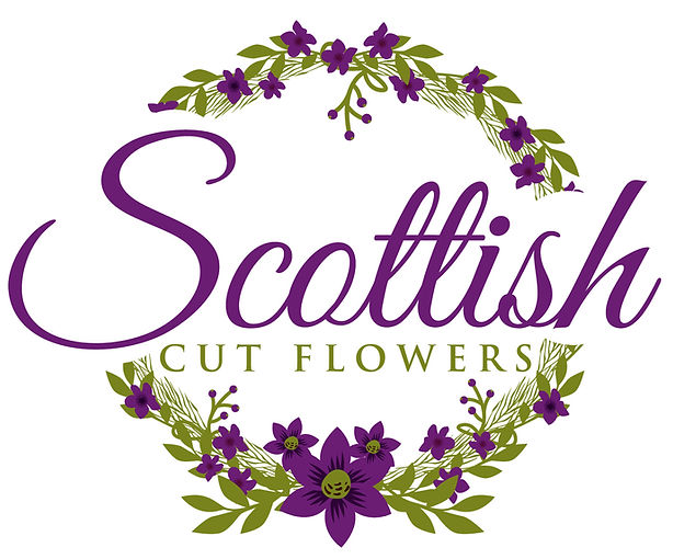 Scottish cut flowers