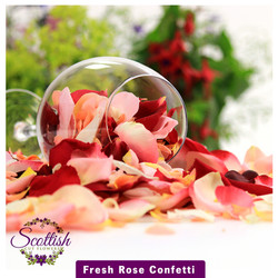 Fresh rose petal confetti