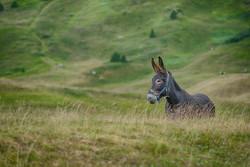 dhfotografie-Daniel Haessig-Landschaft-2