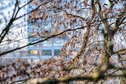 dhfotografie-Daniel Haessig-Architektur-2