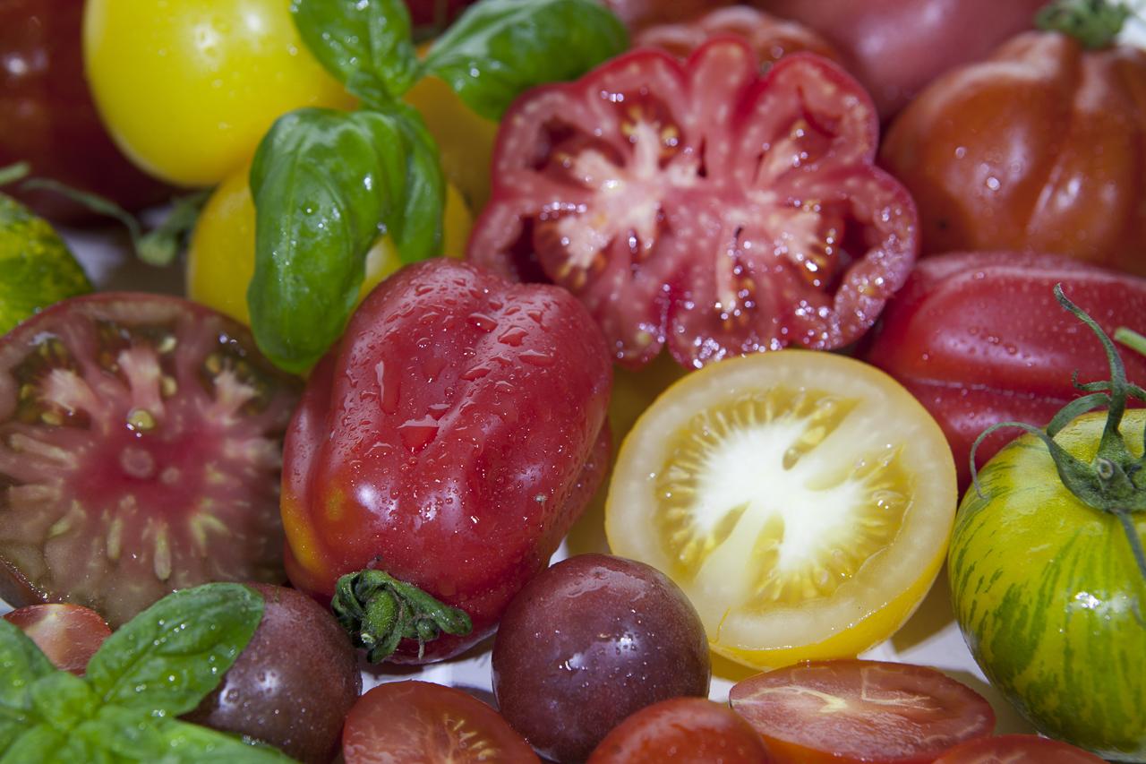 dhfotografie-Daniel Haessig-Foodfotografie-Tomaten