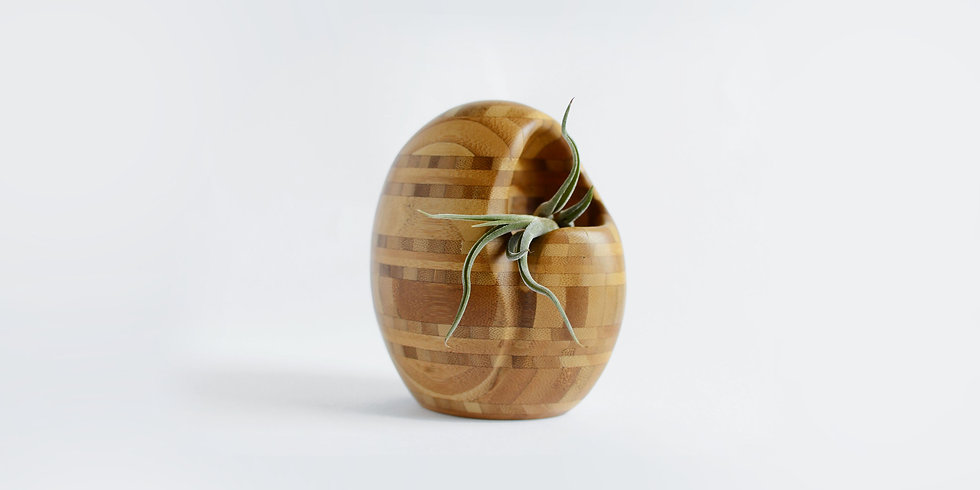 Bamboo Planter Front View