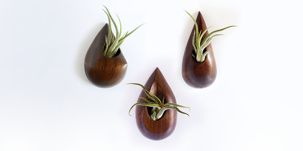 Three American Black Walnut Raindrop Wall Vessels