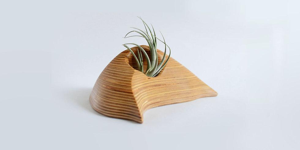 AIR PLANT VESSEL
