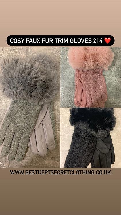 Cosy Faux Fur Trim Gloves