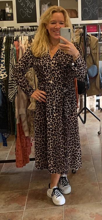 Trinny Animal Print Shirt Dress