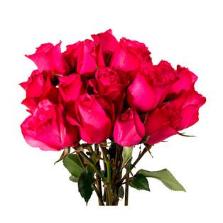 Spray Rose Purple Bubbly Colossal