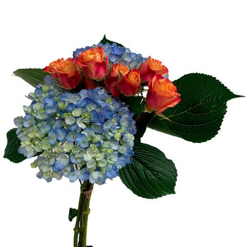 Wise Bouquet