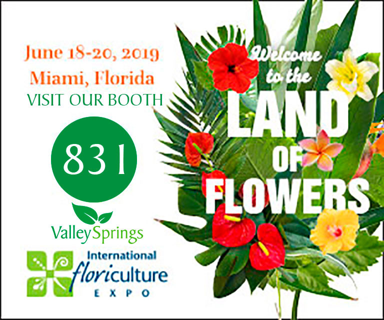 Visit our booth number 831