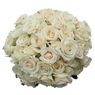 Spray Rose White Majolika
