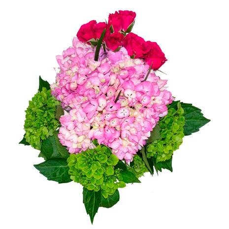 Snow Bouquet TVS Nº1