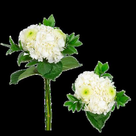 Amity Bouquet