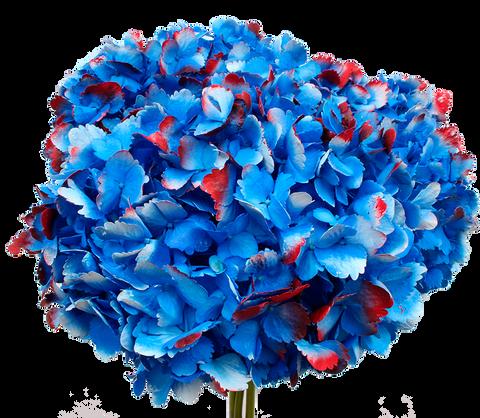 Patriotic Blue