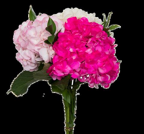 Mom Special Bouquet