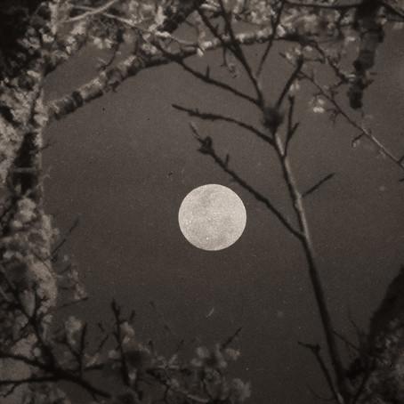 A lua não pode ser roubada