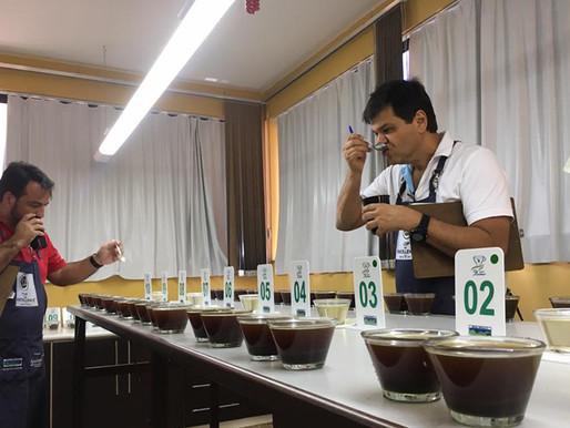 51 amostras das Matas de Minas disputam título de melhor café especial do Brasil