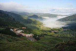 cafes especiais caparao 100% arabica de alta qualidade serra caparao cafe braileiro