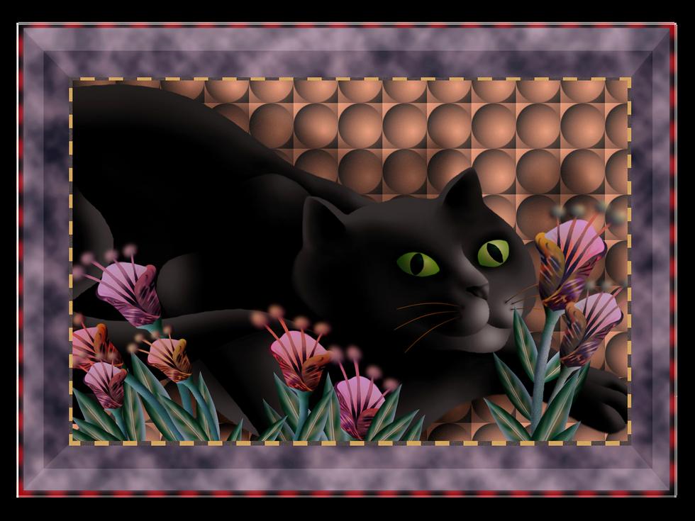 big-cat.png