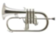 Flugel horn.PNG