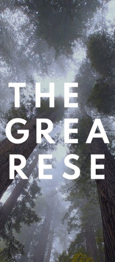 WEF The Great Reset