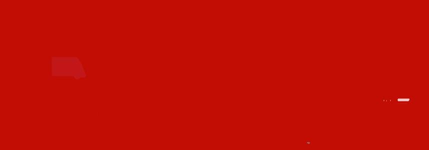 Lüneburg Skyline