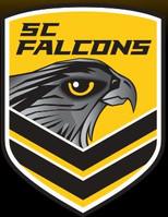 Sunshine Coast Falcons.JPG.jpg